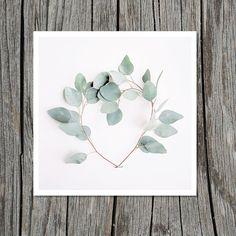 Eucalyptus Heart Photograph   Branches Sage by IdyllwildStudio, $15.00