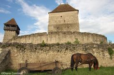 10 Fortified Churches from Transylvania You Should See - Uncover Romania Small Castles, Visit Romania, National Road, Historical Monuments, Medieval Town, Romanesque, World Heritage Sites, Adventure Travel, Places To See