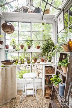 The Backyard Greenhouse Trend Is Here To Stay,And Gardeners Are Gettingmore Creative Than Ever. Investigate This Family's Mini Greenhouse Madefrom Antiqueglass Windows That They Built For Cheap Greenhouse, Build A Greenhouse, Backyard Greenhouse, Greenhouse Ideas, Homemade Greenhouse, Diy Small Greenhouse, Greenhouse Film, Greenhouse Farming, Underground Greenhouse