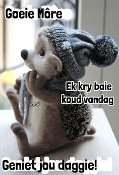 Morning Messages, Morning Greeting, Goeie More, Afrikaans Quotes, Teddy Bear, Grade 1, Mornings, Amanda, Winter