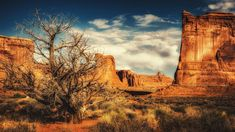 Arches National Park -
