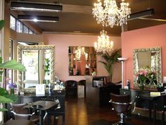 CHIC SALON IDEAS