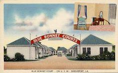 Blue Bonnet Courts - U. Bossier City Louisiana, Shreveport Louisiana, Vintage Postcards, Vintage Signs, Postcard Paper, Bus Station, Vintage Trailers, Blue Bonnets, Travel Maps