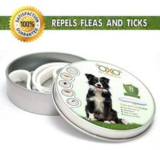 OXO PET PRODUCTS Tick and Flea Collar For Dogs. Natural Repellent With Essential Months Protection'.BEST Natural Pest Solution For Dogs Of All Sizes and Ages. Waterproof, ** Be sure to check out this awesome product. (This is an affiliate link) Tick Repellent For Dogs, Insect Repellent, Flea Shampoo, Tick Control, Dogs Online, Pest Solutions, Flea And Tick, Ticks, Fleas