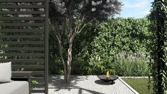 #małyogródmiejski #smallgarden #landscapedesign #greenspaces #greenplaces #architekturakrajobrazu #design #pracowniasttyk #sttyk #estetyka #gardenproject #conception #projektogrodu #plants #trawywogrodzie #bambusywogrodzie #moderngarden #gardengrass #bamboos #placetorelax #joannapolewczak #nataliawankowicz Outdoor Structures, Plants, Plant, Planets