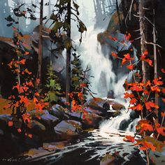 Falls in the Spirit Bear Rain Forest, by Michael O'Toole