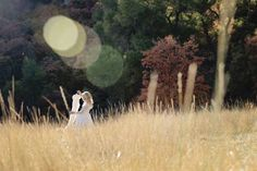 www.frostedproductions.com | #utah #child #photographer #white #lace #dress #eight #year #old #girl #natural #light #sunflare #fall #leaves #tall #grass