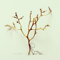 Grape tree without grapes by Javier Perez