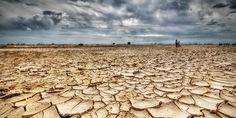 D'après une étude alarmante, publiée lundi dans la revue Nature Climate Change, la Terre connaîtra la sécheresse dans environ trente ans. Plus de trente pour cent de la surface de la planète sera extrêmement aride. Les pays les plus impactés par l'augmentation de la température seront l'Amérique centrale, l'Asie du Sud-est, l'Europe du Sud, l'Afrique australe et l'Australie méridionale.