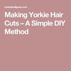 Making Yorkie Hair Cuts – A Simple DIY Method