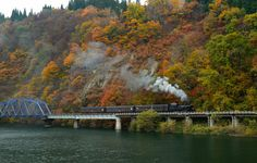It is Aizu railroad (Fukushima, Japan) Passengers increase at a stretch in autumn. This is because there are many families enjoying autumn colors. by kazumi Ishikawa on 500px