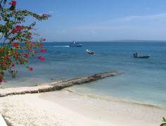The Best Day Trips to Take From Cartagena Romantic Honeymoon Destinations, Best Honeymoon, Travel Destinations, Romantic Beach Getaways, Tayrona National Park, Colombia Travel, Paradise Island, Beautiful Islands, World Heritage Sites