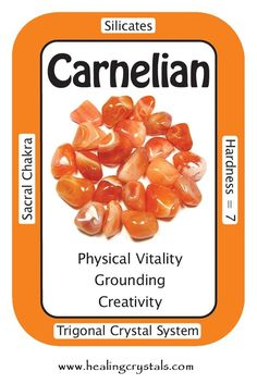 """Carnelian, """"I have inner peace and joy.""""  Carnelian is useful in making decisions by keeping us focused on the here and now and not on past experiences. It calms anger and grounds you in reality, while keeping you aware of unconditional Love permeating the Universe.  Code HCPIN10 = 10% discount  www.healingcrystals.com/advanced_search_result.php?dropdown=Search+Products...&keywords=carnelian  www.healingcrystals.com/Crystal_Information_Cards___Oracle_Decks_1__2_and_3.html"""