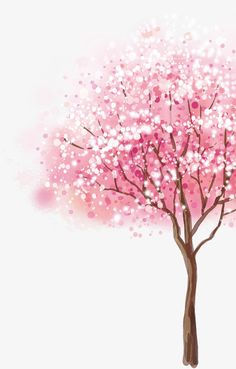 Cherry tree clipart ideas for 2019 Cherry Blossom Wallpaper, Cherry Blossom Painting, Flower Phone Wallpaper, Cute Wallpaper Backgrounds, Pretty Wallpapers, Pink Wallpaper, Cellphone Wallpaper, Watercolor Trees, Floral Watercolor