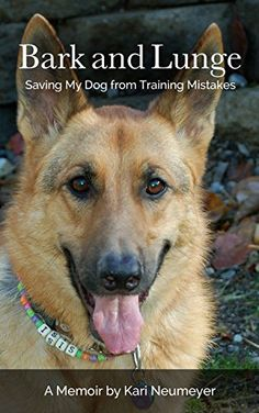 Bark and Lunge: Saving My Dog from Training Mistakes - http://www.thepuppy.org/bark-and-lunge-saving-my-dog-from-training-mistakes/