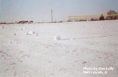 """Snow Rollers are natures own version of snow balls. These log-shaped """"snowballs"""" showed up on lawns, fields, and other open areas formed when the surface is icy on which falling snow cannot stick. Then an inch or so of loose, wet snow  accumulates followed by gusty and strong winds which to scoop up the snow. Once the initial """"seed"""" of the roller is started, it begins to move collecting additional snow from the ground as it rolls along, leaving trails behind it."""