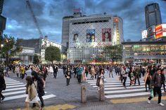 Shibuya hachiko Crossing Tokyo Japan