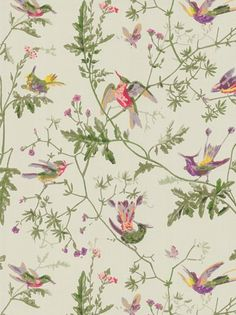Cole & Son Hummingbirds Wallpaper, Green
