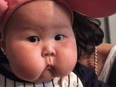 胖嘟嘟~ – 行動網路電視台