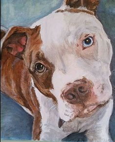 paintings by Darla Allred. Acrylic pet portraits.