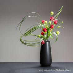 A spring arrangement with tulips. Floral Art : Ilse Beunen Photography: Ben Huybrechts