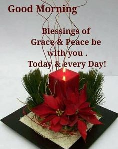 Christmas Morning Quotes, Tuesday Quotes Good Morning, Good Morning Image Quotes, Merry Christmas Quotes, Christmas Blessings, Good Morning Good Night, Morning Pictures, Morning Wish, Christmas Greetings