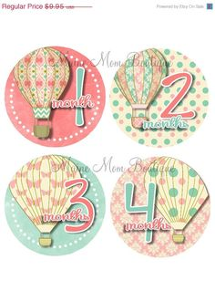Hey, I found this really awesome Etsy listing at https://www.etsy.com/listing/163311413/on-sale-baby-girl-monthly-stickers