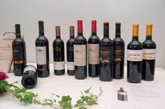 Vinos argentinos 2