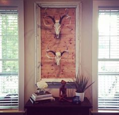 DIY Home Decor summary number 4073576996 - Clear and easy decor styling answers for the delightfully smart atmosphere. Deer Skull Decor, Deer Head Decor, Deer Skulls, Deer Mount Decor, Taxidermy Decor, European Mount, Deer Mounts, Trophy Rooms, European Home Decor