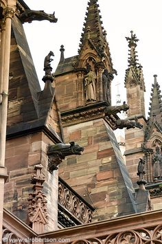 Strasbourg Cathedral 20