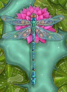 Dragonfly And Water Lily Print By Zdenek Sasek