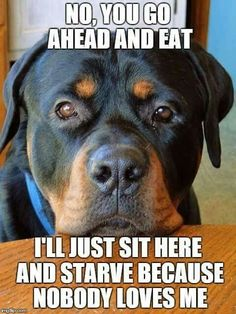 """""""No. You go ahead and eat. I'll just sit here and starve because nobody love me."""""""