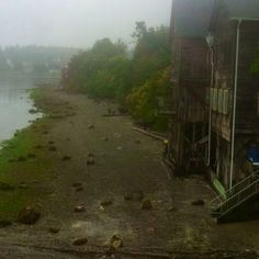 Water Side at Low Tide::Coupville on Whidbey Island. WA