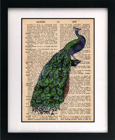 Peacock print from etsy
