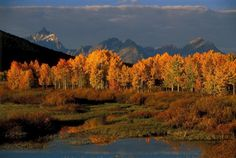 Fall in Jackson Hole: 6 Things to Do in Grand Teton National Park - Jackson Hole WY Central Reservations