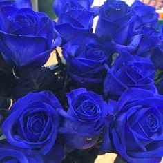 Blue #roses #pallotsflorist #pallotflowers #cheapside #sthelier #jersey #jerseyci