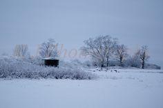 British Snow Landscape images, Bedfordshire Photography