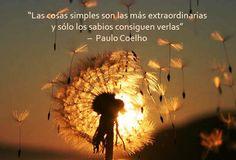 """""""Las cosas simples son las más extraordinarias y sólo los sabios consiguen verlas"""" –  Paulo Coelho"""