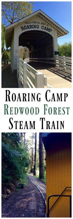 Roaring Camp Railroads - Ride the Redwood Forest Steam Train or the Santa Cruz Beach Train. Gorgeous views and history!!