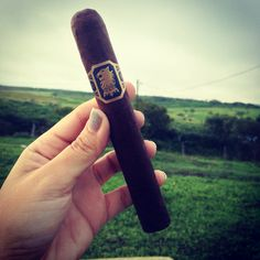 This is a great cigar Drew Estate Cigars  Undercrown. When you want a Liga Privada #9 but don't want to spend that much money.