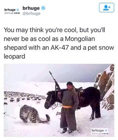 Science Discover Funny on - Dank memes Hilarious jokes Funny videos and Stupid Funny The Funny Funny Jokes Funny Fails Animal Memes Funny Animals Funny Images Funny Pictures Tierischer Humor All Meme, Stupid Funny Memes, The Funny, Funny Fails, Hilarious Jokes, Animal Memes, Funny Animals, Funny Images, Funny Pictures