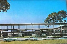 Sarasota School, Sarasota Florida, School Architecture, Art And Architecture, Paul Rudolph, Walter Gropius, Sanibel Island, In Boston