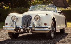 Arriving at the Goodwood Revival in a Jaguar XK150
