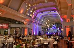 Custom Edison Bulb Chandeliers hung from Henry Ford Museum's ceilings