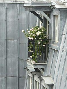 Ou comment tirer parti de son micro balcon parisien !