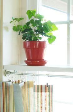 Install simple shelves in the middle of a window - provides added shelving and a topper for cafe curtains below. by guida