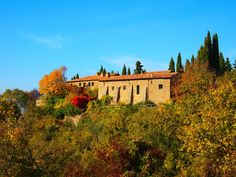 Agriturismo Convento di Novole, Tuscany. Dating from 1450, Novole is a group of houses nestled in the green hills on the border between Umbria and Tuscany http://www.organicholidays.com/at/3427.htm