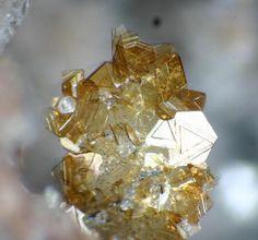 Biotite, Nepheline, Rutile Wannenköpfe, Ochtendung, Polch, Eifel, Rhineland-Palatinate, Germany Copyright © frank de wit