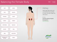 Interactive Health Infographic On How You Can Keep Your Body In Balance