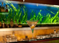 First Floor White Wine, Martini, Alcoholic Drinks, Flooring, Tableware, Glass, Food, Centre, Dinnerware